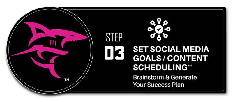 Set Social Media Goals & Use Content Scheduling